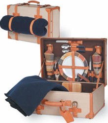 69485 pinic time discovery suitcase basket